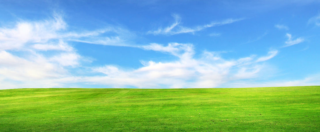 green meadow with blue sky and white clouds
