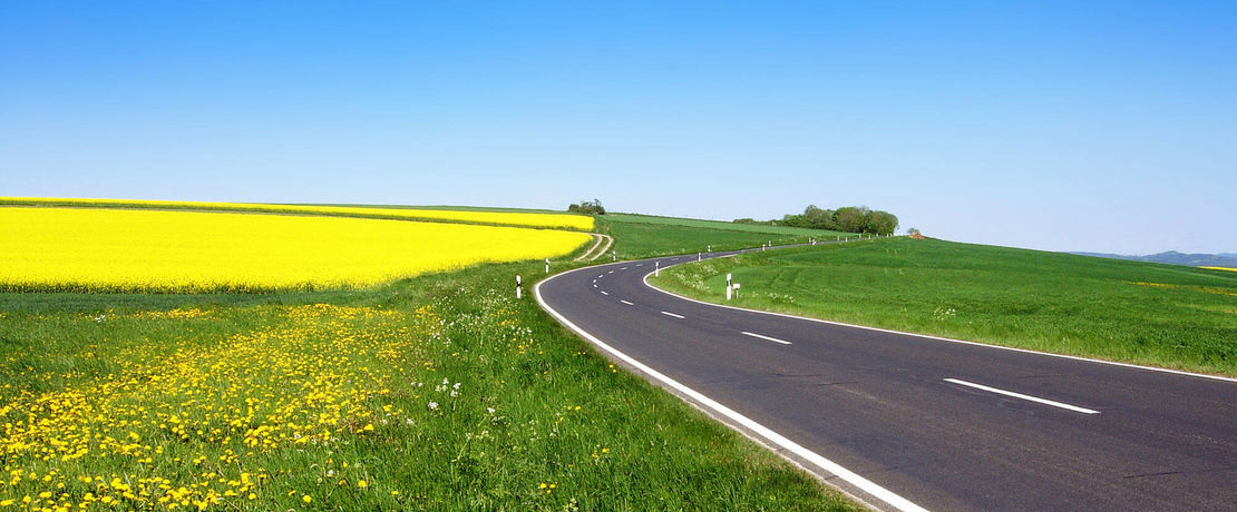 winding road between green meadow with dandelions and blue sky