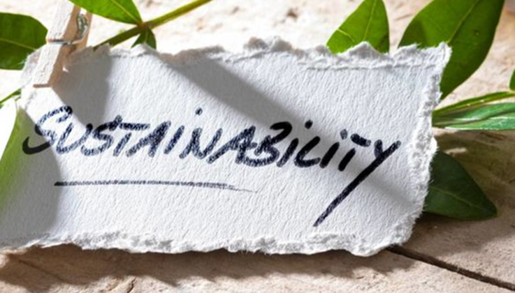 """Sign that reads """"sustainablility"""" in front of plants"""