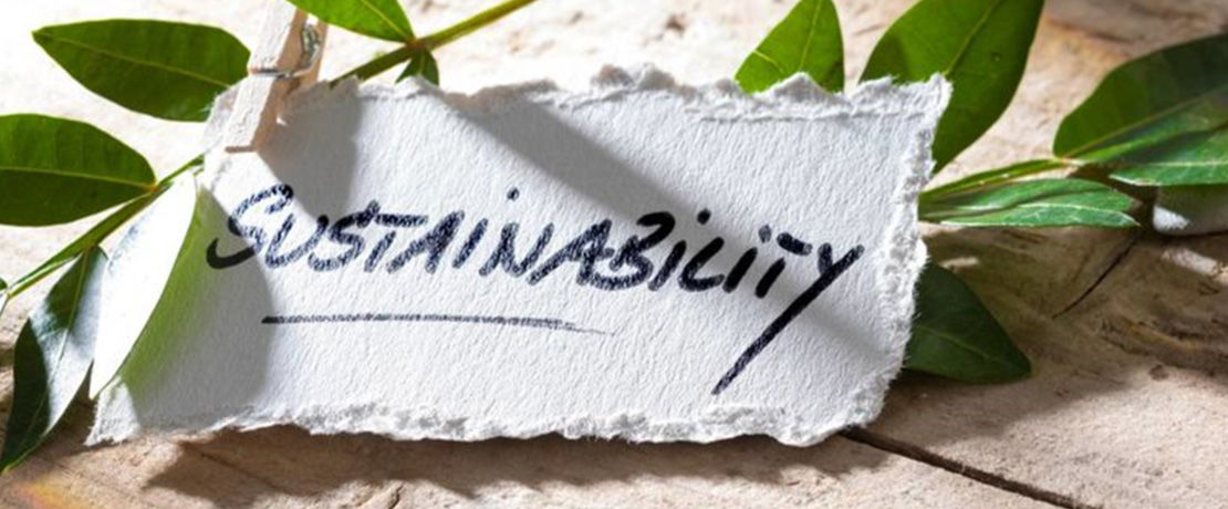 the word sustainability written on a piece of paper clipped to leaves